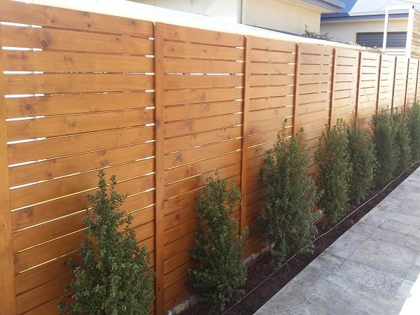 Treated pine (4)1